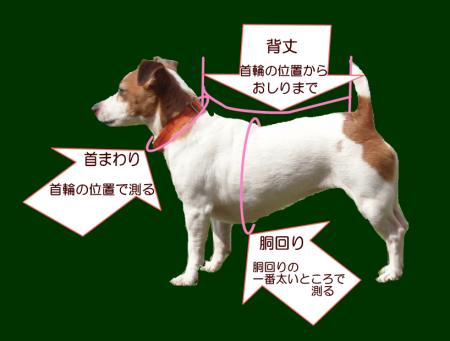 Saisunhyouji2